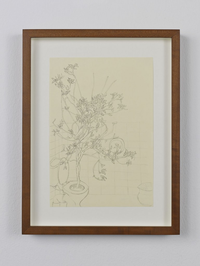 Juliette Blightman. »Barbara Gladstone, Brussels«. 2013. Graphite on paper, framed. Unique.