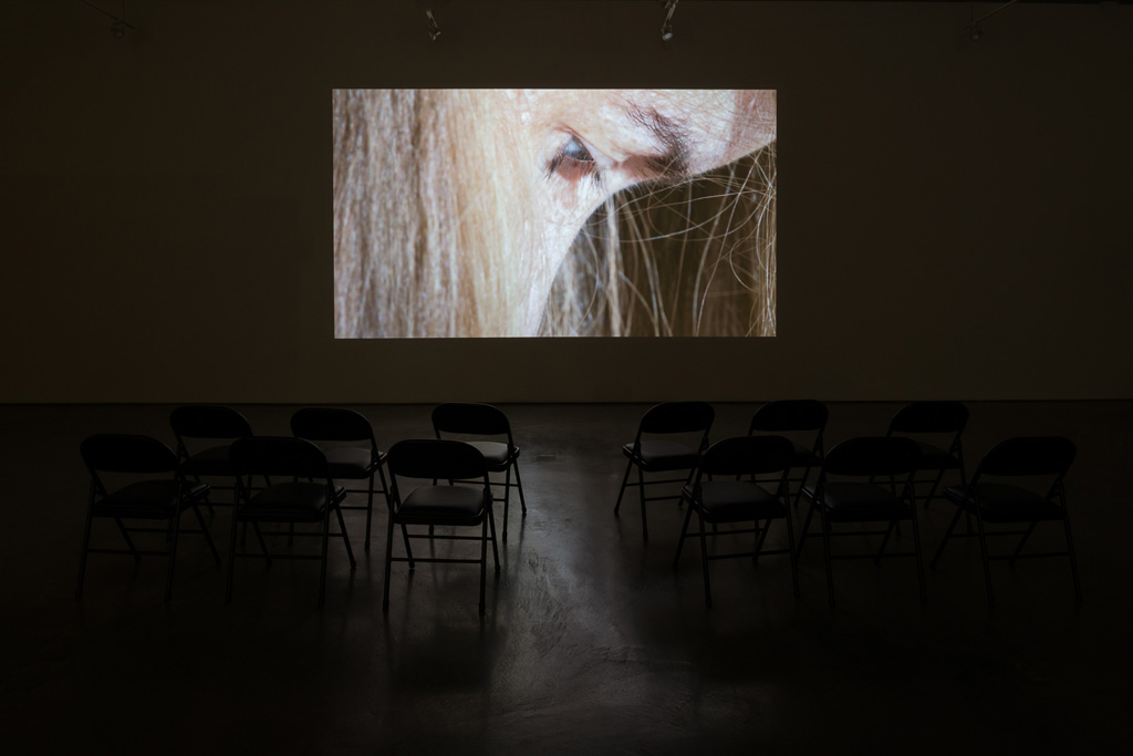 Jos de Gruyter & Harald Thys, »Die Aap van Boemfontein«,<br>2014, Single channel video projection, color, sound,<br>Duration : 23 minutes
