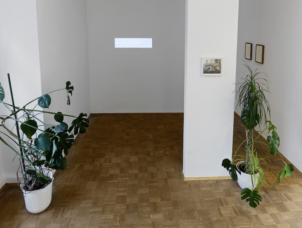 Installation view: »Transparencies«, Bielefelder Kunstverein, Bielefeld, 07.11.15—17.01.16