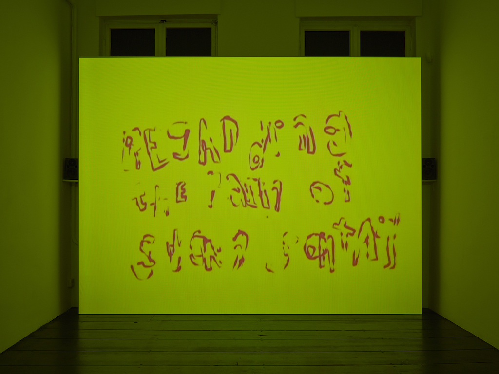 Steve Reinke, »Regarding the Pain of Susan Sontag (Notes on Camp)« (still from video), 2006, 4 min