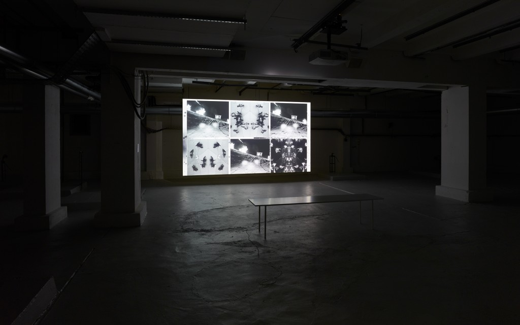 "Installation view, Julia Stoschek Collection, Berlin, James Richards & Leslie Thornton, Crossing, 2016, Digital video, 19'12"",colour, sound,