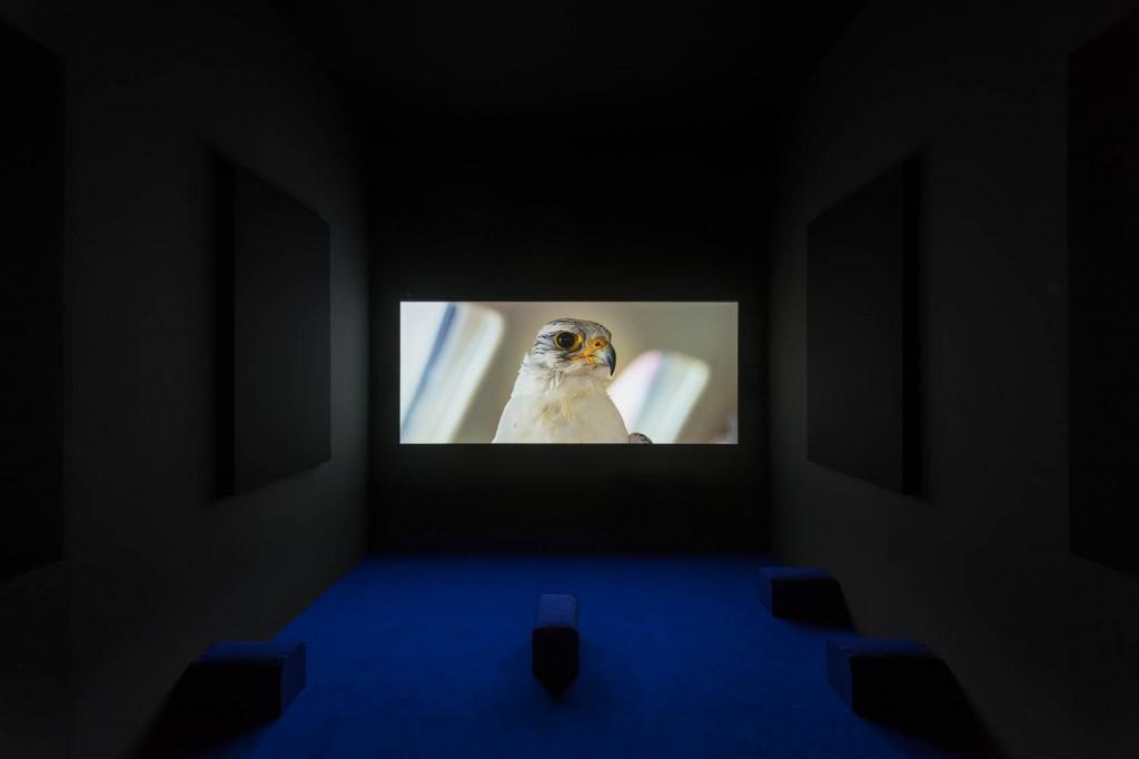 Artbasel Unlimited, 2017, Yuri Ancarani, »THE CHALLENGE«, 2016, DCP, sound 5.1,<br/>aspect ratio 2.35, color,