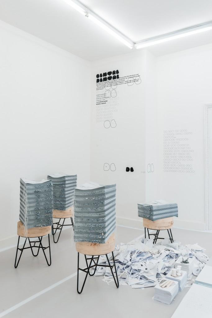 Manuel Raeder und Nora Schultz, Magazin, 2017 Kunstverein Braunschweig, Villa Salve Hospes, 09.09.17—12.11.17
