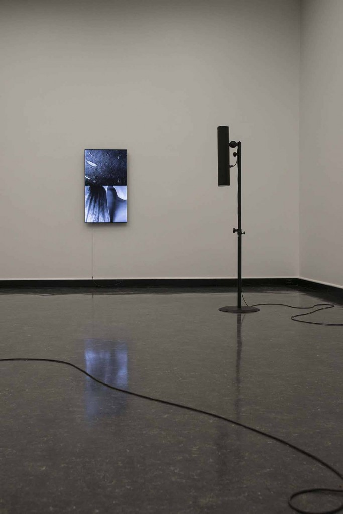 James Richards, Installation view, Crumb Mahogany 4, 2016, Digital video loop Bergen Kunsthall, Norway, February 26 – April 3, 2016