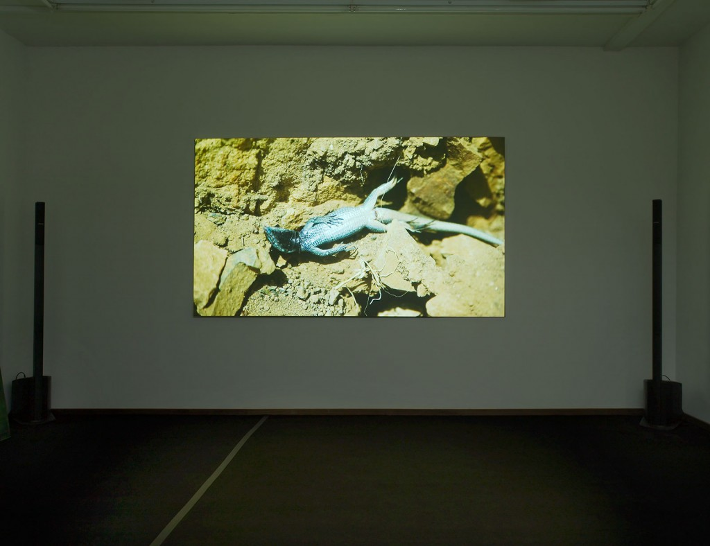 Ed Atkins, »Death Mask III«, 2011. HD video. Duration 34:46 minutes.