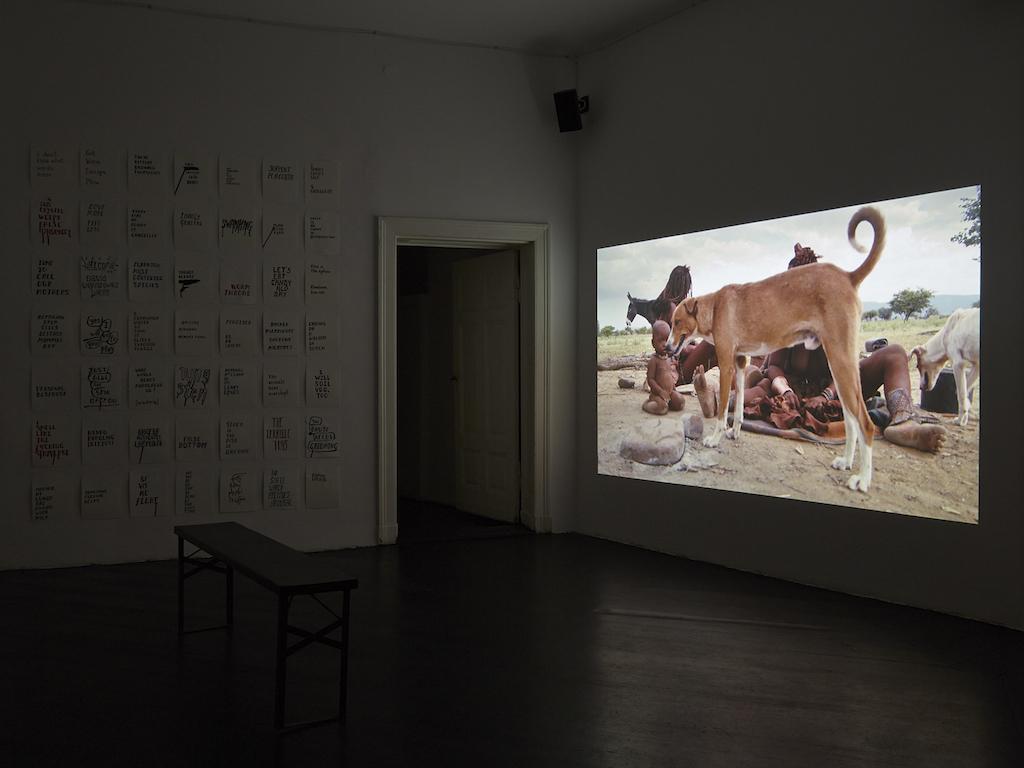 Steve Reinke, »The Genital is Superfluous«, installation view, <br>Galerie Isabella Bortolozzi, Berlin, 12.02.16-09.04.16<br/>