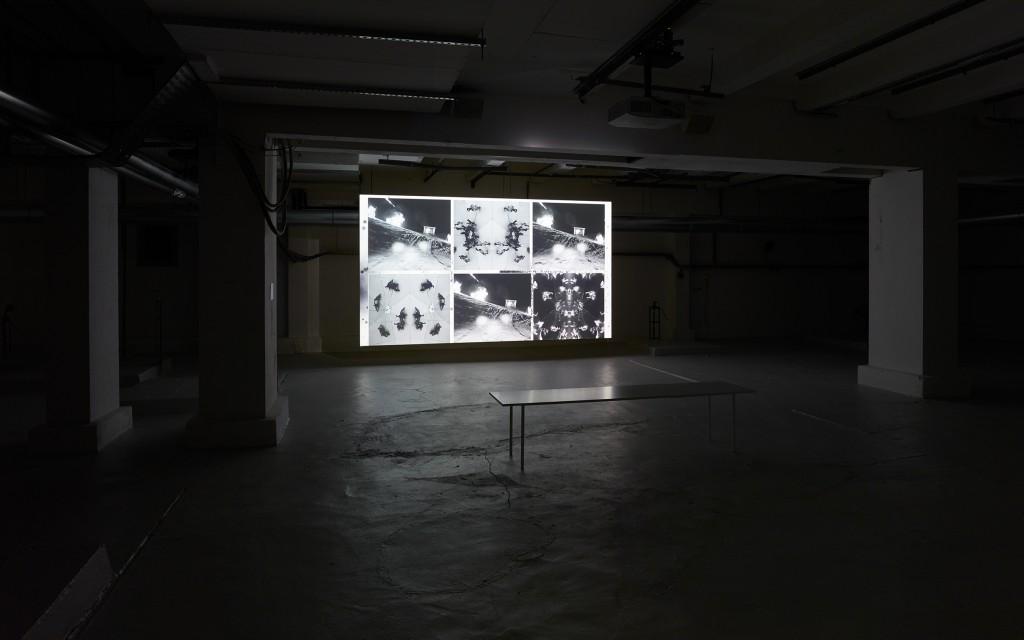 "Installation view, Julia Stoschek Collection, Berlin, James Richards & Leslie Thornton, Crossing, 2016, Digital video, 19'12"",colour, sound, Photo: Simon Vogel"