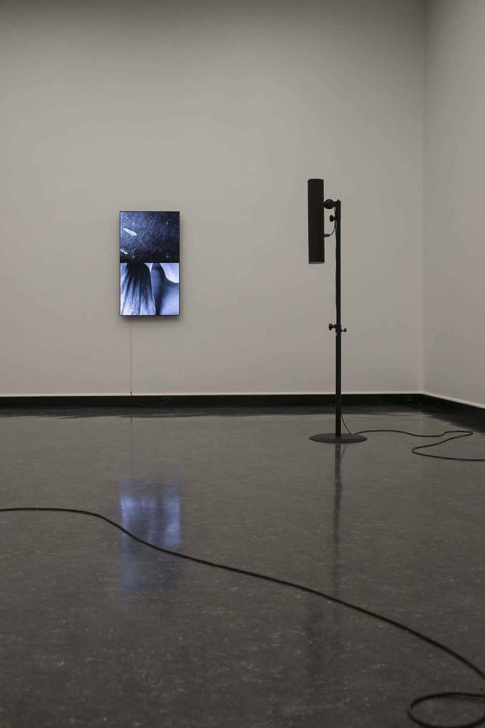 James Richards, Installation view, Crumb Mahogany 4, 2016, Digital video loop Bergen Kunsthall, Norway, February 26 – April 3, 2016