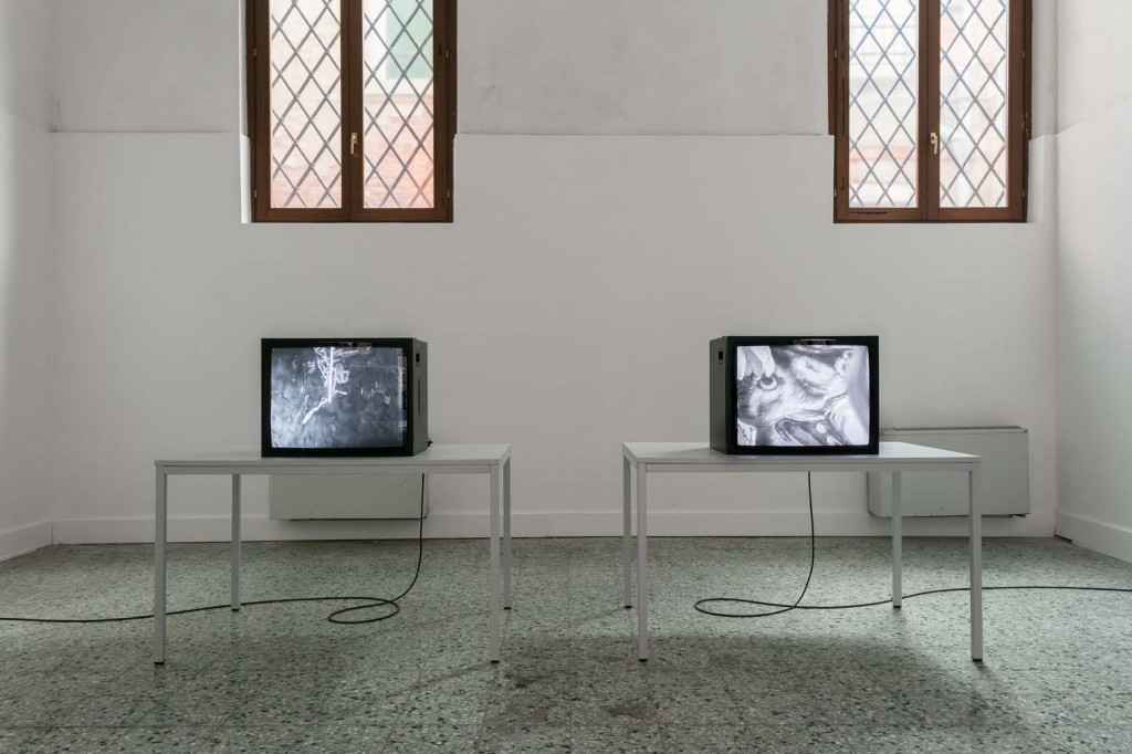 Installation view: James Richards, Music for the Gift, two channel silent digital video, 2017, Wales in Venice, 13.05.17 – 26.11.17 Photo Mark Blower