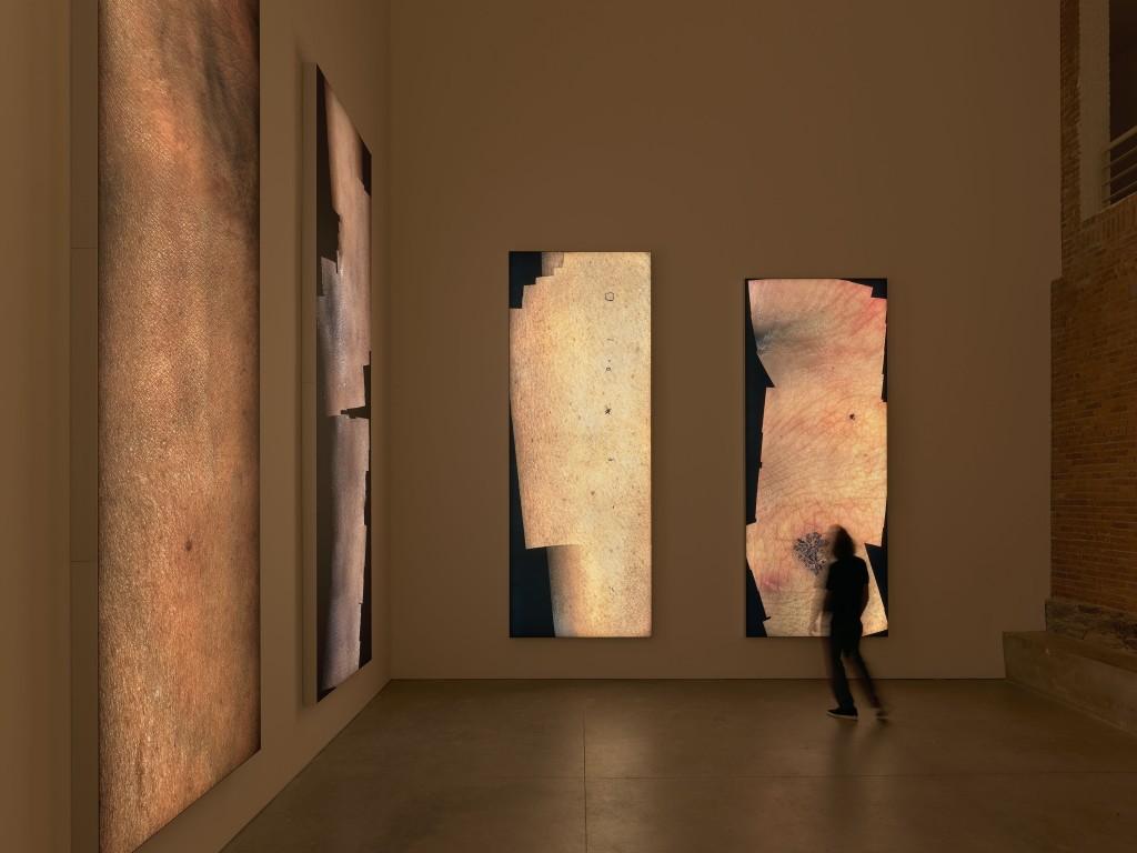 Seth Price, installation view, Danny, Mila,Hannah, Ariana, Bob, Brad, MoMA PS1, New York, 2018